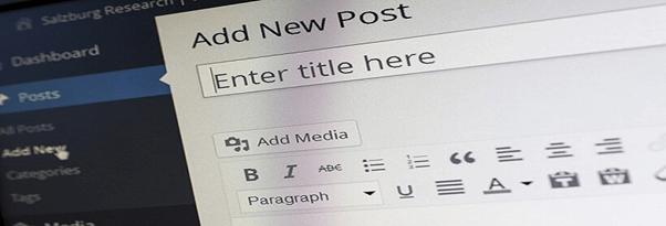 Top 5 WordPress Themes and Plugins